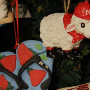 A Kiwi Christmas